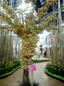 About 2,000 flower origamis on the tree, as of yesterday
